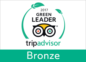 Greenleaders api en large bronze 24206 5