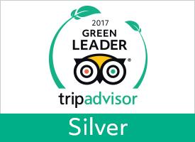 GreenLeader Silver